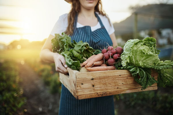 Picture of women holding a basket of produce