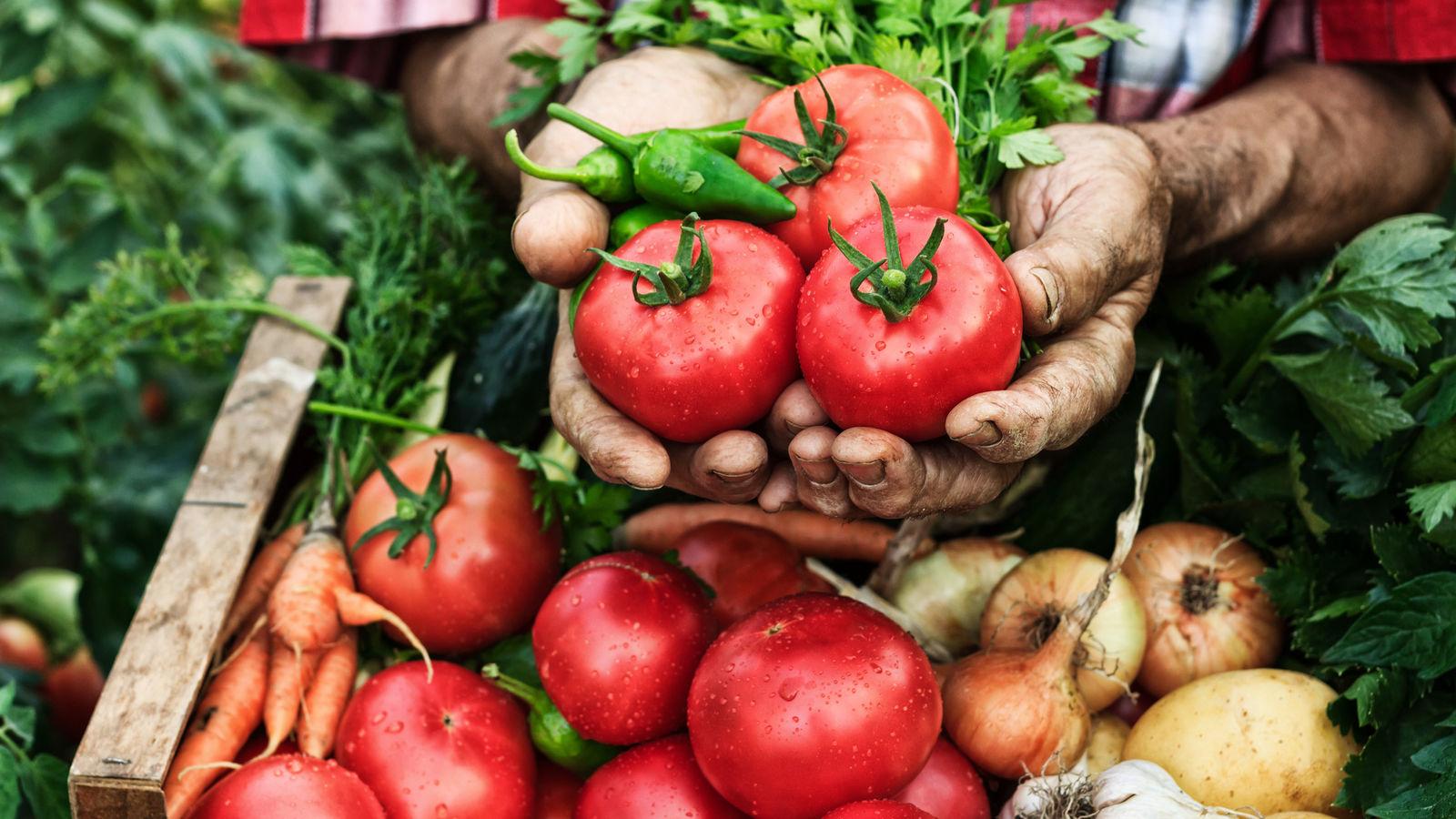 A man holding a basket of fresh produce