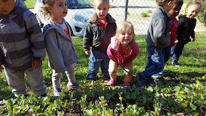 Image of children helping out in a garden at a KinderCare Education site.