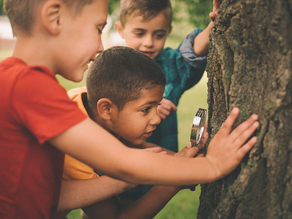 Image of three young boys using a magnifying glass to examine a tree trunk for National Recreation and Park Association's story for PHA's 2017 #PHABack2School campaign.
