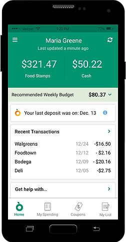 Image of the Fresh EBT app, produced by Propel.